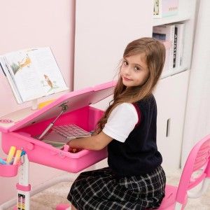 ChaCha Pink Desk